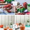 Wassermelonen Gazpacho mit Feta & Minze