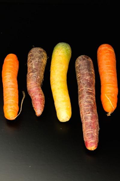 haseimglueck.de Rezept, Mini-Quiche-Bunte-Karotten 2