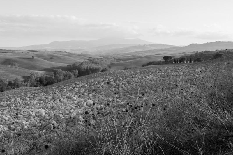 haseimglueck.de Dies&Das, Toskana-Impressionen-2014, Siena 3