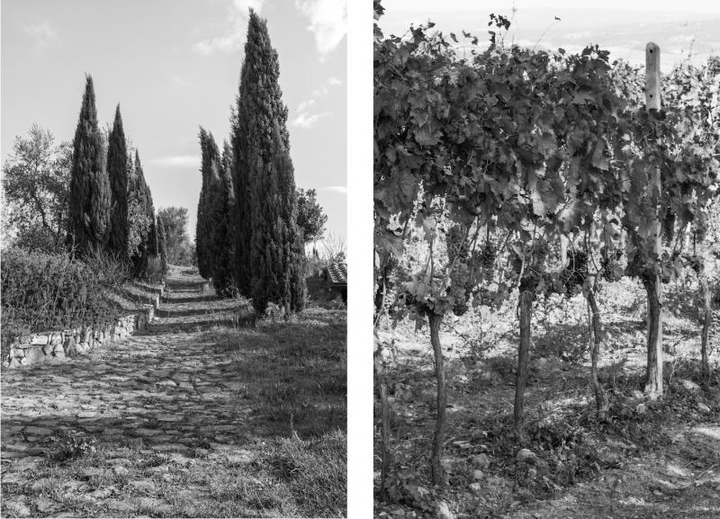 haseimglueck.de Dies&Das, Toskana-Impressionen-2014, San Quirico 1
