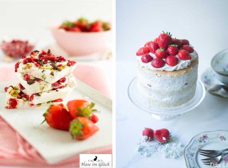 haseimglueck.de Rezept, Frozen Yoghurt Tafeln 1