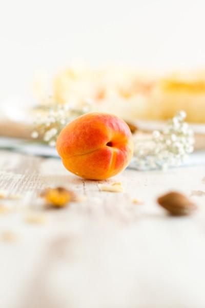 haseimglueck.de Rezept, Aprikosen Käsekuchen Filoteig 8