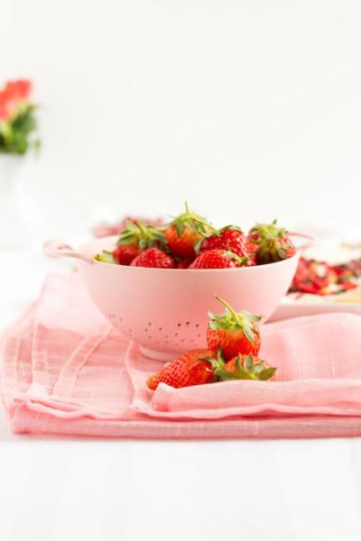 haseimglueck.de Rezept, Frozen Yoghurt Tafeln 6