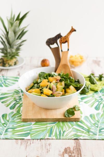 haseimglueck.de Rezept, Brunnenkresse Salat+Ananas & Avocado 8