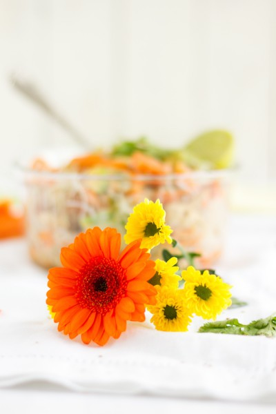 haseimglueck.de Rezept, Glasnudeln Papaya Salat 2