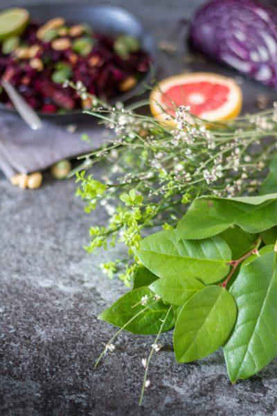 Asiatischer Rotkohlsalat mit Wasabinüssen I Red Cabbage Salad Asia Style with Wasabi Nuts